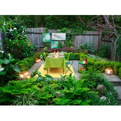 Posh Fast Backyard Decor Ideas Overall After 0612 Outdoor Party Decorations Backyard Basics Home Outdoor Outside Decorating Ideas