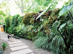 Small Of Landscaping Ideas Backyard