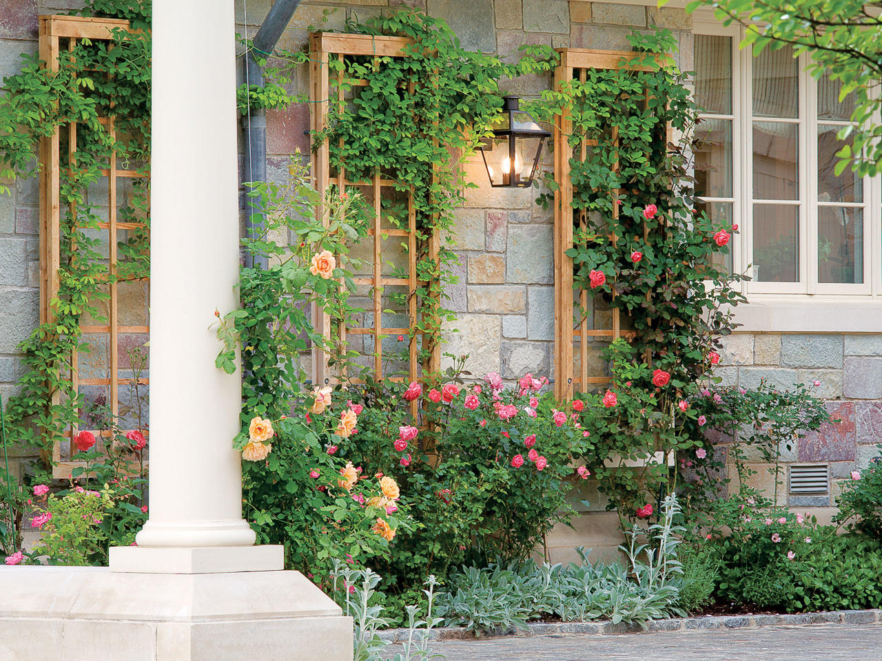 Fullsize Of Great Garden Plants