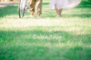 [婚紗] 野餐風輕婚紗(自助婚紗拍攝前置作業)