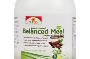 Premium Plant-Based Protein Balanced Meal Replacement Shakes – Fermented Whole-Food, Organic Vegetables, Herbs, Super Fruits, Fiber, Omegas