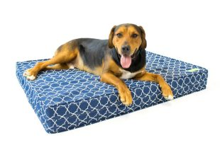 Orthopedic Dog Bed – 5″ Thick Supportive Gel Enhanced Memory Foam – Made in the USA | 100% Cotton Removable Cover w/ Waterproof Encasement | Fully Washable | Small, Medium & Large Pet Beds