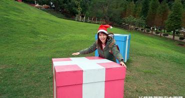 新竹景點推薦!心鮮森林也有落羽松秘境!戴聖誕帽拍照打卡即可免費入園