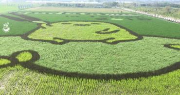 【台南。免費景點】2016台南好米季 「蛋黃哥彩繪稻田」就在太康有機農業專區,有興趣的人把握時間「稻」此一遊吧