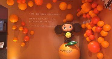 台北特展︳你好,我是查布!大耳查布50周年特展在華山文創園區免費參觀!