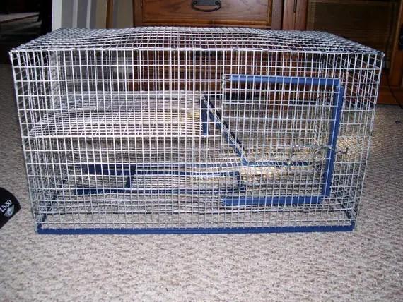 20 Gallon Long Aquarium Cage Topper Split Level by magnumpie