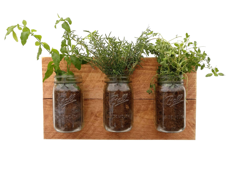 Fullsize Of Wall Mounted Indoor Herb Garden