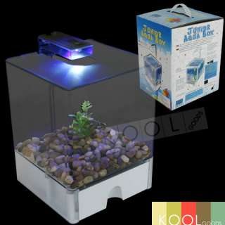 Betta fish tank light betta fish tank kit clear plastic for Betta fish tank light