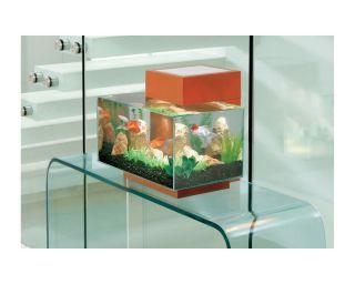 New Contemporary Glass Aquarium Kit 6 Gallon Fish Bowl Tank Light