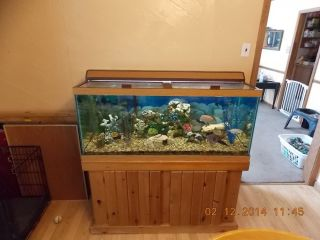 Fish tank stand lids foot fish tank lid and stand for 55 gallon fish tank lid