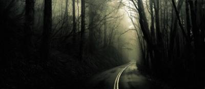 Into The Mist Digi-Painting by mehhbud on DeviantArt