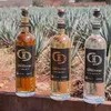 USA Today 10 Best Current Leaderboard for Best Craft Tequila Brand http://wp.me/p3u1xi-4qm