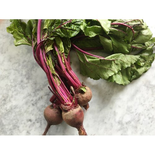 Medium Crop Of How To Store Beets