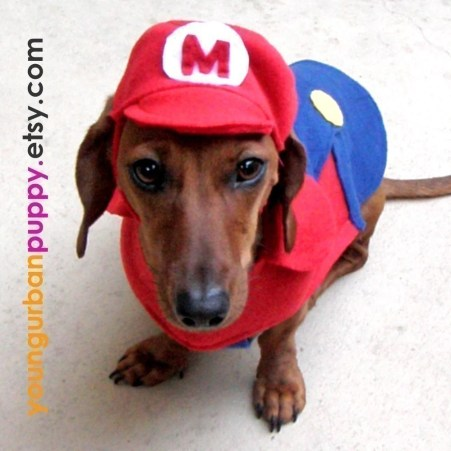 Young Urban Puppy store on Etsy Super Mario Bros NES Nintendo dog costume