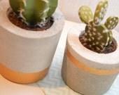 handmade concrete pot / h...