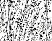 Natalie Barnes - Makers Home - Beach Grass
