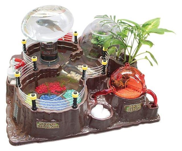 Betta fish tanks cool unique betta fish tanks cool betta for Toys for betta fish