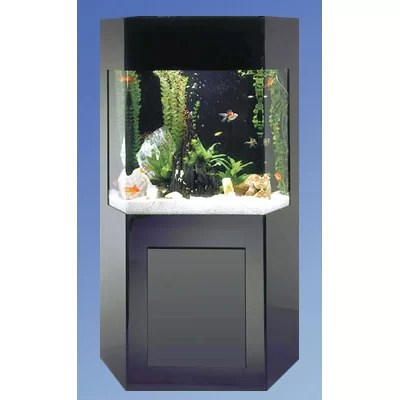 Aqua 50 Gallon Custom Shadow Box Aquarium Kit | Wayfair