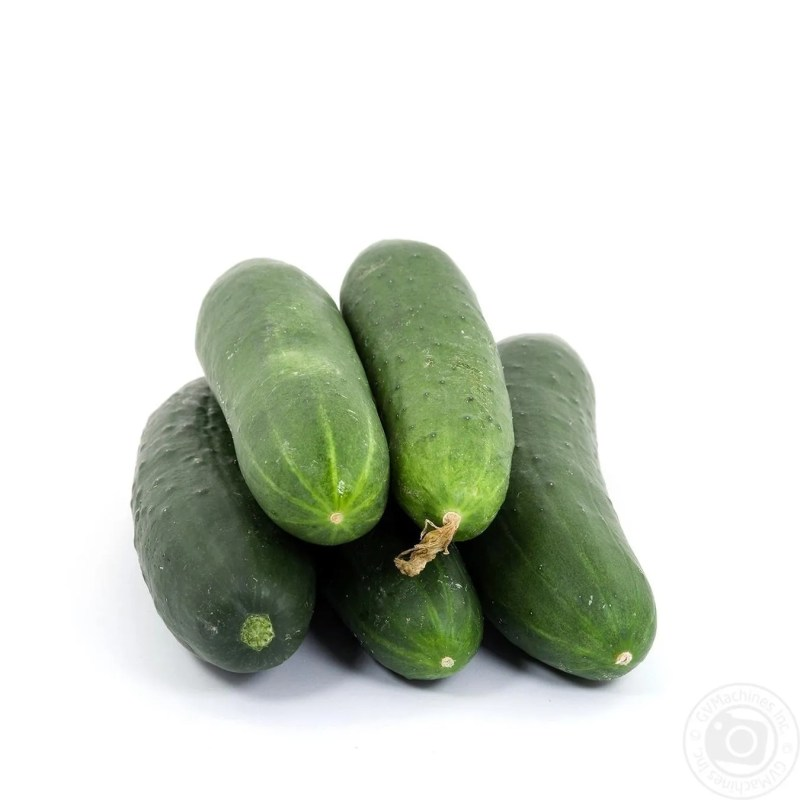 Large Of How To Store Cucumbers