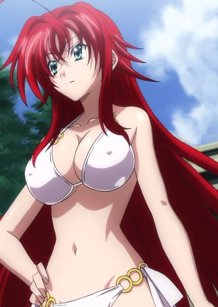 The Top Hot Anime Girls Rias Gremory is listed  or ranked  1 on the list The Top Hot Anime