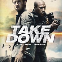 Take Down (2016) 720p WEB-DL X264 802 MB