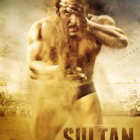 Sultan (2016) Hindi 1080p HEVC BluRay X265 1GB