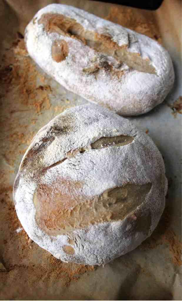liquid sourdough starter makes pretty bread