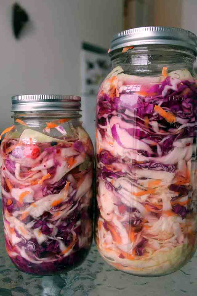 quick-pickled sauerkraut ready for fermentation