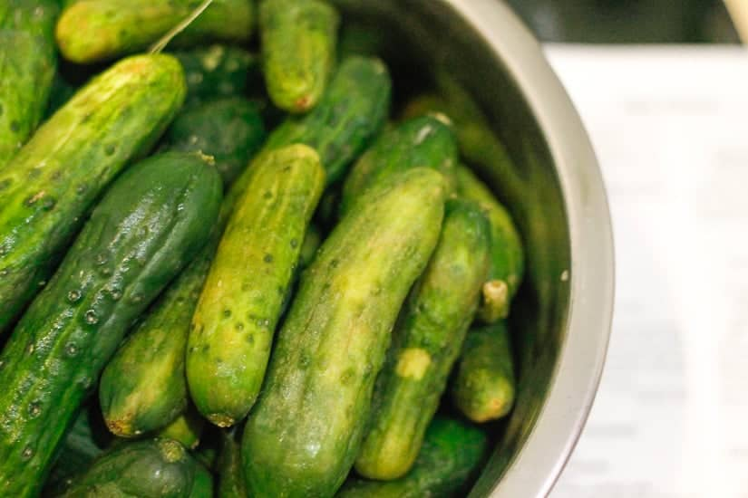 Spicy garlic dill pickles 1