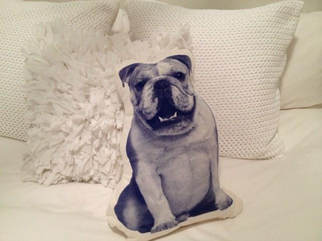 Printed_Animal_Pillow