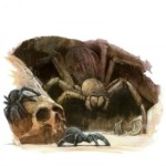 Warhammer Quest Travelling Hazard - Giant Spider
