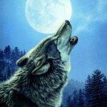 Warhammer Quest Travelling Hazard - Wolves