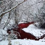 Image of a crimson-coloured river flowing through a snowy forest to illustrate the Warhammer Quest Travelling Hazard River of Blood