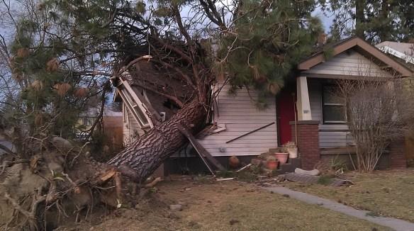 smashed house2