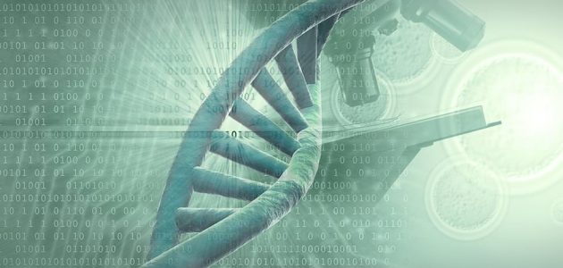 Junk DNA? Or Does It Reveal The Source Of Our Mind & Intelligence?