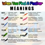 This Is What Different Feather Colors Mean