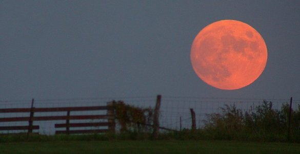 While certain atmospheric conditions could make it possible for the moon to be a strawberry color on any given night, it will most likely appear to be yellow. The exception would probably occur as the moon is rising over the horizon. In the case of the Strawberry Moon, it will have the appearance of looking much larger during this full moon. This is called the Moon Illusion. While there are many possible explanations as to why this illusion appears to us, the truth is, no one really knows why it looks so large upon the horizon.