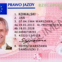 2009 yılında İrlanda polisi Prawo Jazdy adındaki kişiye 50den fazla trafik cezası yazıldığını farketti. Sonradan anlaşıldı ki Prowa Jazdy Polonyacada ehliyet demekti.