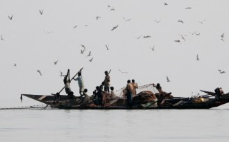 Chilika Lake recovers from Cyclone Phailin