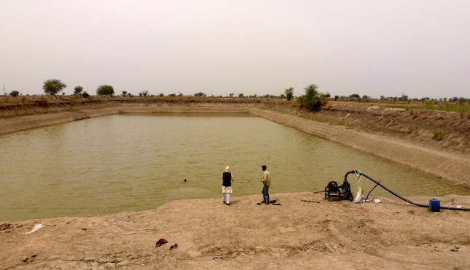 The pond dug a few years ago in Jignanda village of Hamirpur district still holds plenty of water despite scanty rainfall.