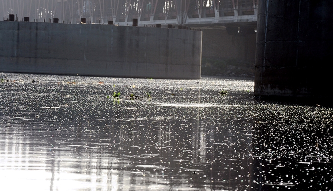 Methane bubbles from the water near Qudsia Ghat. An estimated 80% of Yamuna's pollution load comes from the 18 drains that empty into the river as it passes Delhi