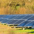 India's solar dream rests on Chinese imports