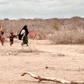 Indian Niño brings devastating drought to East Africa