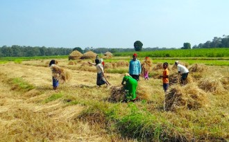Agriculture needs more investment for climate resilience