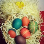 DIY- Dye your own Easter Eggs