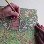What do you think of Adult Coloring Books?
