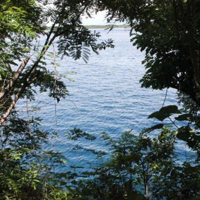 Beach front land in Penida Island for sale !