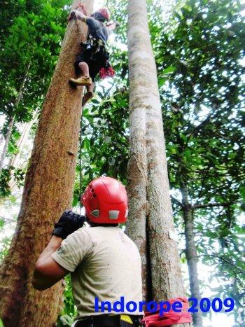 Advanced Safety Tree Climbing Training 1