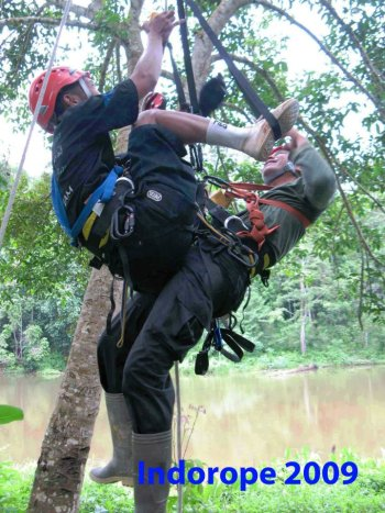 Advanced Safety Tree Climbing Training 7