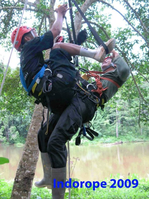 Advanced Safety Tree Climbing Training 7